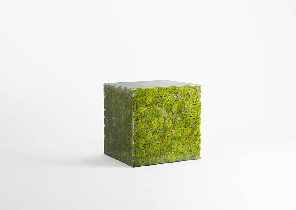 MOSS COLLECTION GREENDESIGN 2