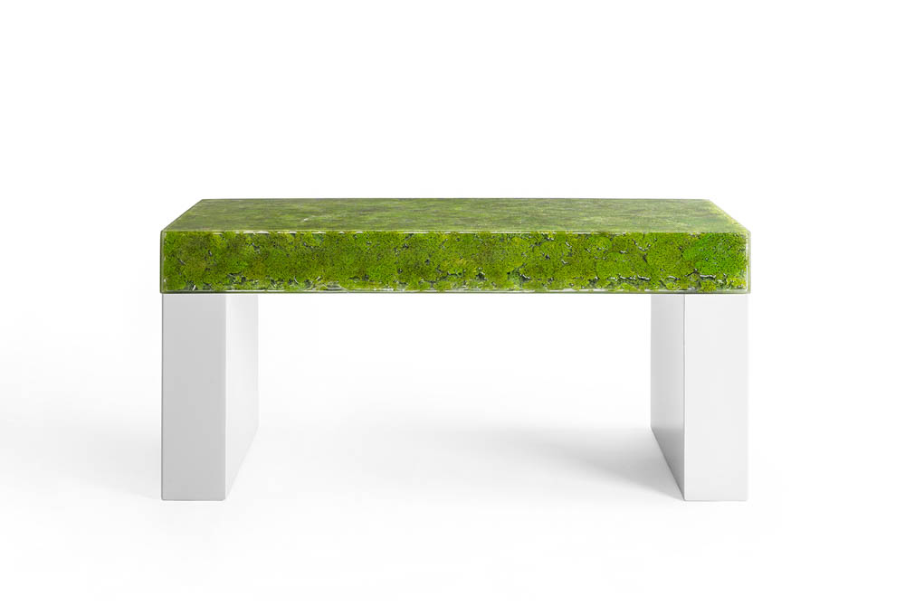 MOSS COLLECTION GREENDESIGN 4