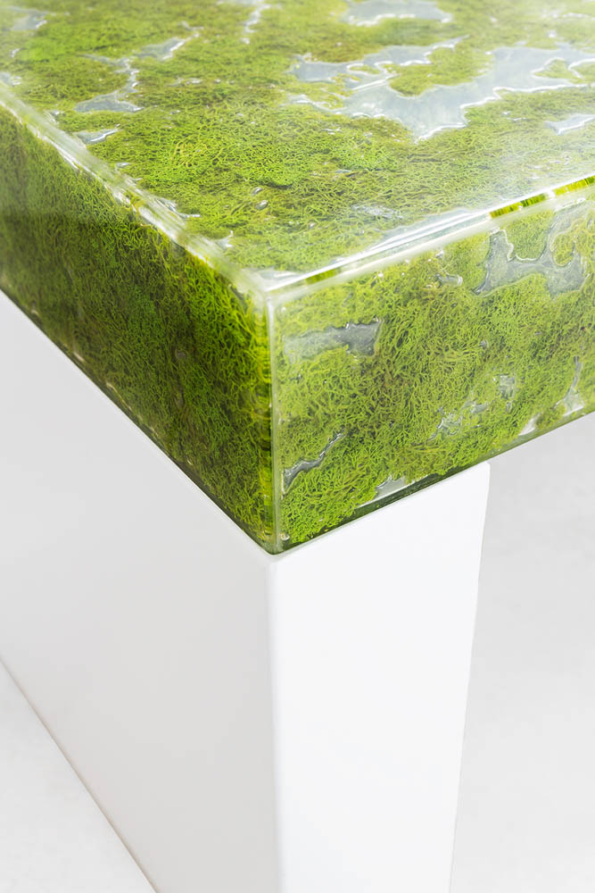 MOSS COLLECTION GREENDESIGN 6